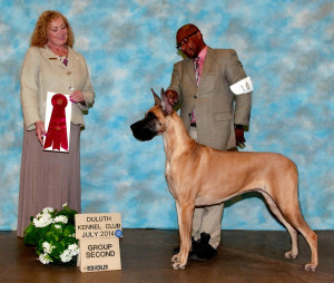 Grace - Group 2, Duluth Kennel Club, July 2014
